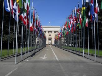 Vereinten Nationen (UN)
