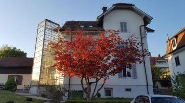Casa Carmela